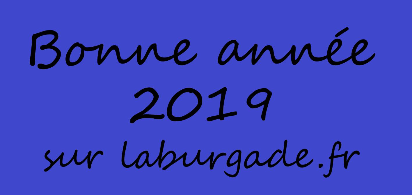 Voeux 2019 laburgade